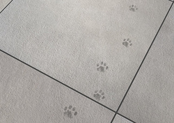 Warum Bodenfliesen optimal für deine Katze sind