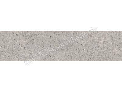 Villeroy & Boch Aberdeen opal grey 30x120 cm 2988 SB60 0 | Bild 1