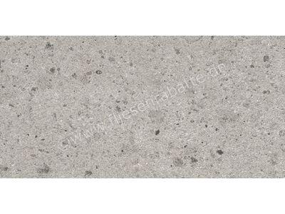 Villeroy & Boch Aberdeen opal grey 30x60 cm 2526 SB6R 0 | Bild 1
