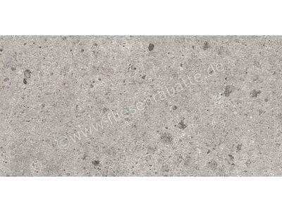 Villeroy & Boch Aberdeen opal grey 30x60 cm 2536 SB6V 0 | Bild 1