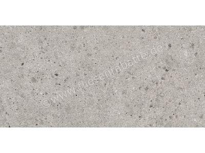 Villeroy & Boch Aberdeen opal grey 40x80 cm 2845 SB60 0 | Bild 1