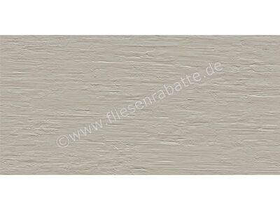 ceramicvision Paris ash 40x80 cm CVPRS19RT | Bild 1
