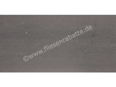 Agrob Buchtal Titan 2.0 grau 30x60 cm 434022