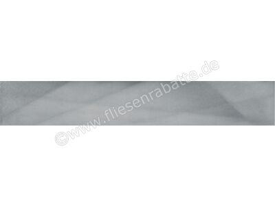 Agrob Buchtal Xeno edelstahl 10x60 cm 281560