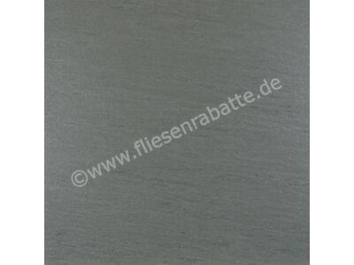 TopCollection Leo gris - grau 60x60 cm Leo gris 60x60