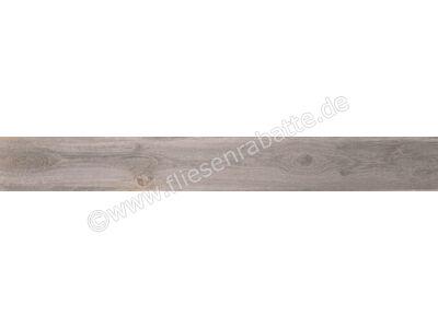 Ariostea Legni High-Tech quercia petraea 18.7x150 cm PAR18449