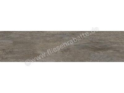 Agrob Buchtal Driftwood grau-braun-mix 25x100 cm 8630-352025HK | Bild 1