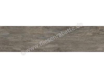 Agrob Buchtal Driftwood grau-braun-mix 30x120 cm 8630-B620HK   Bild 1