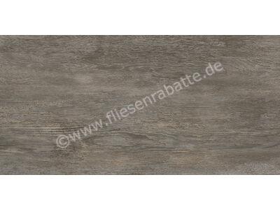 Agrob Buchtal Driftwood grau-braun-mix 50x100 cm 8630-352050HK-1 | Bild 1