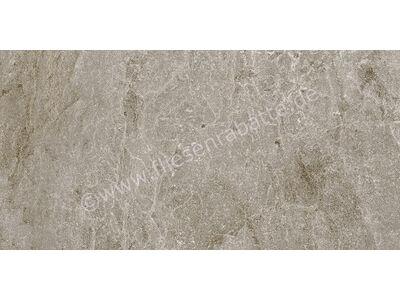 ceramicvision Dolomite taupe 30x60 cm CV99349 | Bild 2