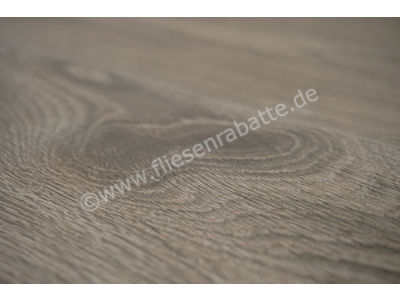 ceramicvision Wildeiche timber 26x160 cm CVECH66RT | Bild 3
