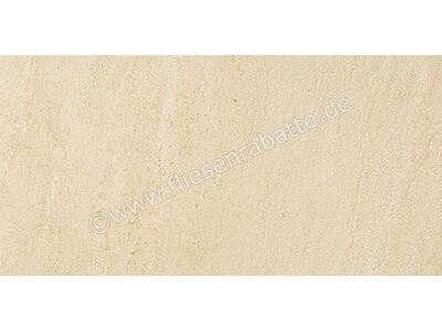 Pastorelli Quarzdesign beige 30x60 cm P002712