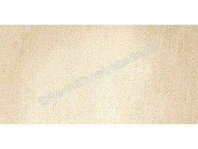 Pastorelli Quarzdesign beige 30x60 cm P002717