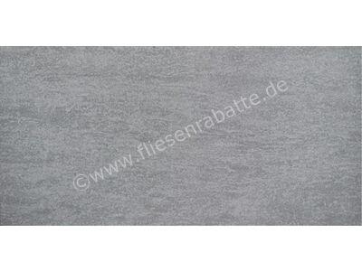 Agrob Buchtal Geo 2.0 steingrau 30x60 cm 433911 | Bild 1