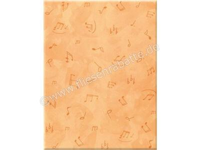 Steuler Let´s Rock mandarin 25x33 cm 34103