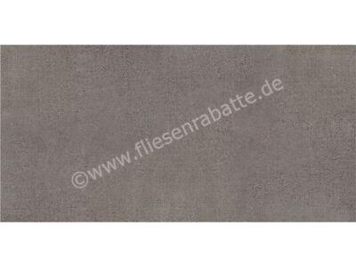 Agrob Buchtal Pasado graubraun 45x90 cm 433869 | Bild 1
